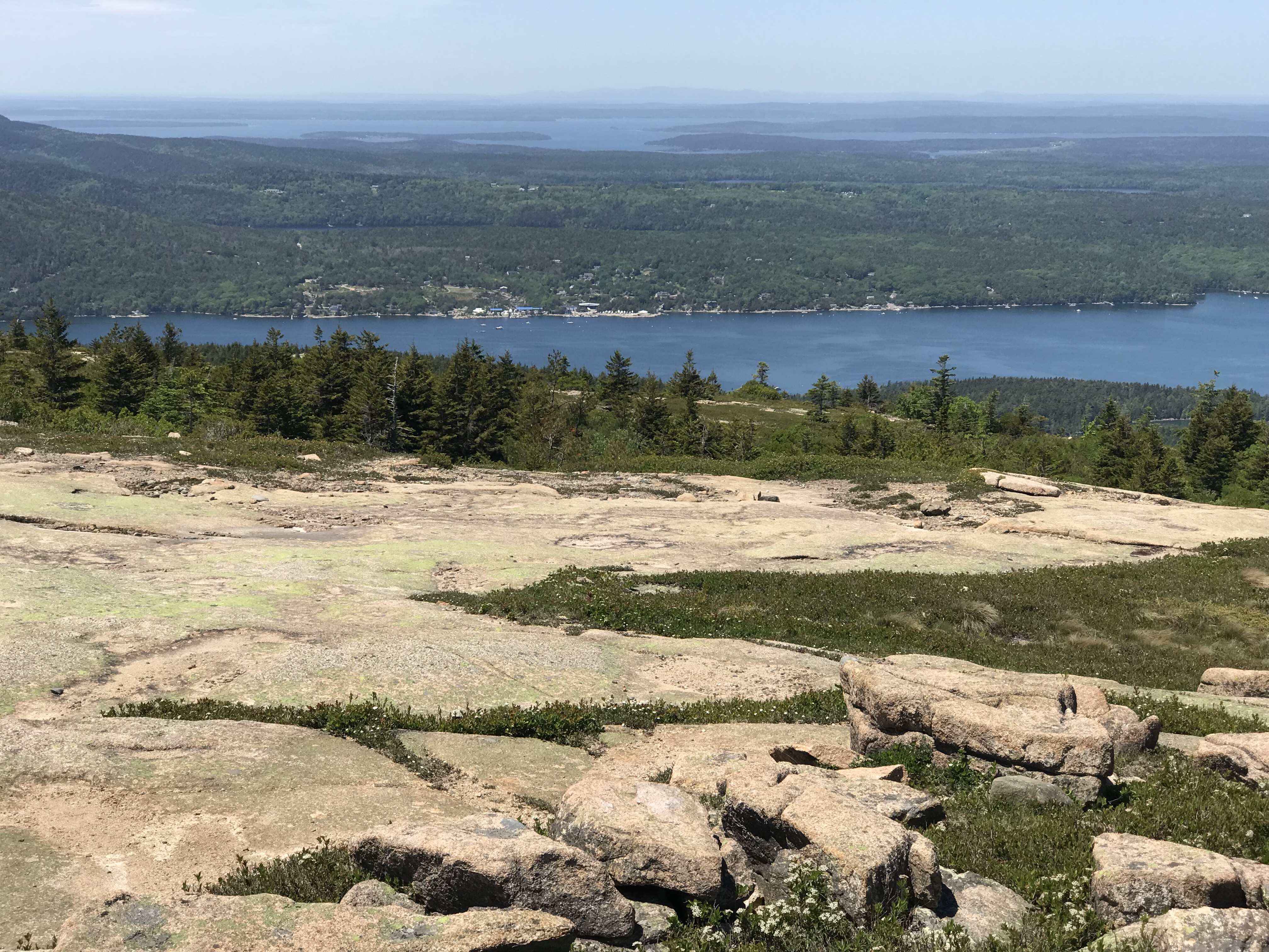 Hall Quarrry and Somes Sound from Sargent Mt