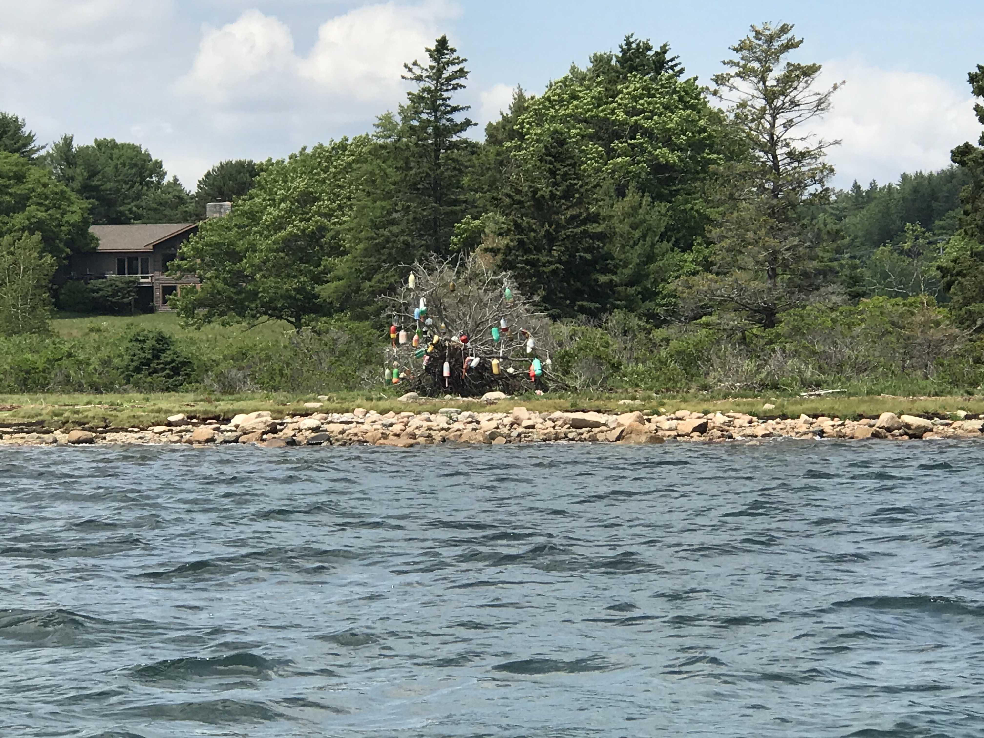 Lobster bouy tree on Somes Sound